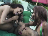 Hung stallion gets blown by two babes